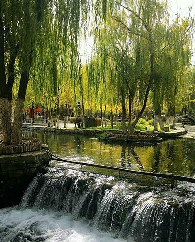 齐市最大的公园,园内有小桥流水,亭台楼阁,环境优美,漫步观赏十分不错图片