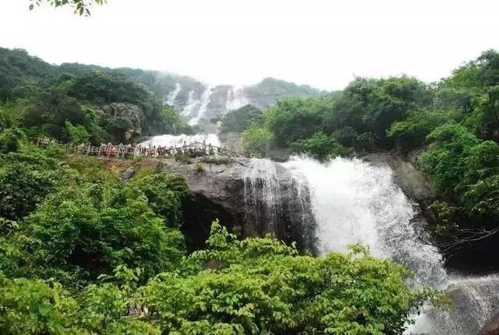 一直只是听说白水寨,却没有去过,可是,为了白水仙瀑布,走4999级的楼梯级,一上一下就成了8000多级的。走在临瀑布而建的木栈道上,感受身旁瀑布倾泻而下的激昂,扬起的洁白水花撒在身上,带来丝丝的清凉。抬头观看白练般的瀑布,可见纯净洁白的水流至山顶处飞泻而下,在树木掩映之下飞流直下,哗哗的水声不绝于耳,让人感觉壮观不已! 可以选择一个周末去白水寨,登高、赏瀑、吸氧、玩乐!白瀑、绿植、阳光,完美地构成一幅和谐的自然山水风景图!既可以可以近距离的欣赏白水仙瀑,又可以感受瀑布奔流直下的气势。 【交通】 1、在广州