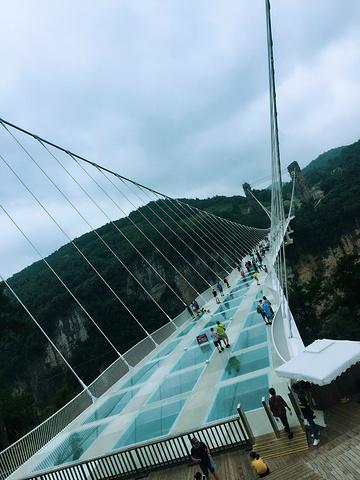 """还是很美的.这个是土匪洞,感觉很酷哦_张家界大峡谷玻璃桥""""的评论图片图片"""