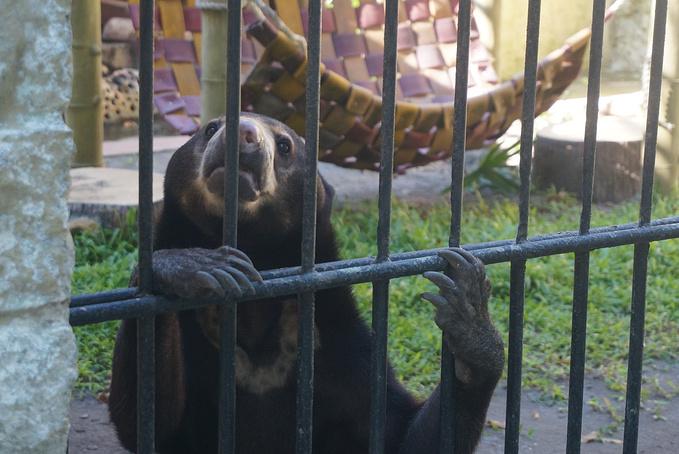 泗水动物园图片