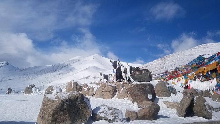 米拉山口,即西藏米拉山的山口,地处拉萨市到墨竹工卡县与林芝地区工布