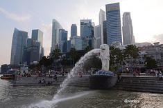 新加坡美食购物自由旅