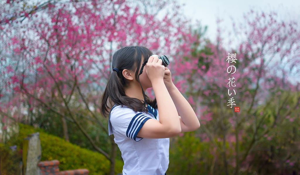【福建】樱花季,永福樱花,遇见花开。
