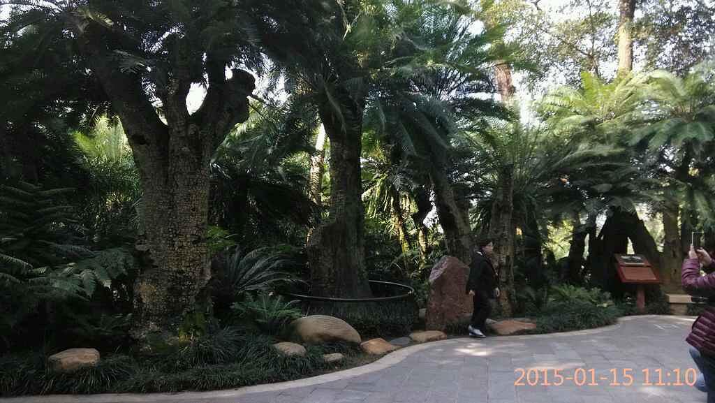 南宁市动物园位于广西南宁市大学西路,地处.