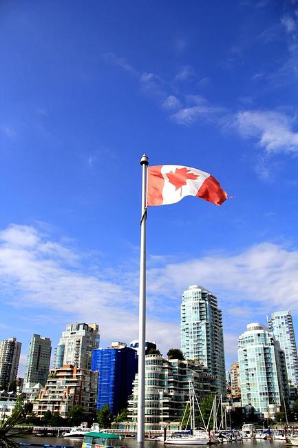 港口上的加拿大国旗