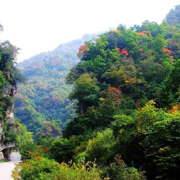 2019红河谷森林公园攻略,洲岛红河谷森林公园门票眉县涠自驾图片