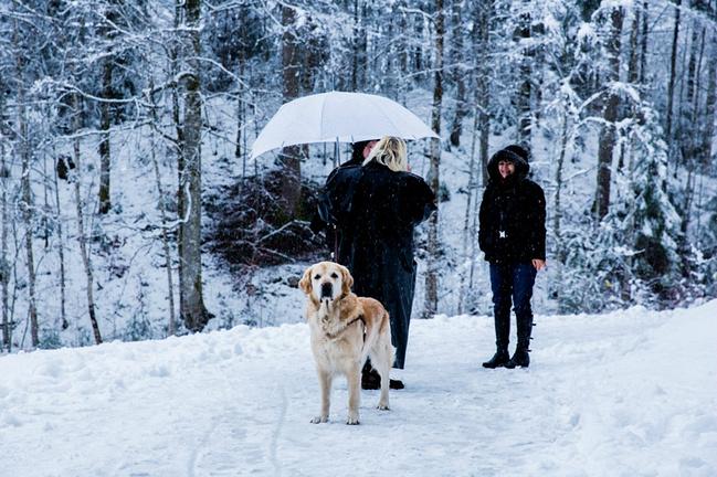 去看欧洲的冬天:德国奥地利_因斯布鲁克v攻略攻略拍7游戏新玩法图片