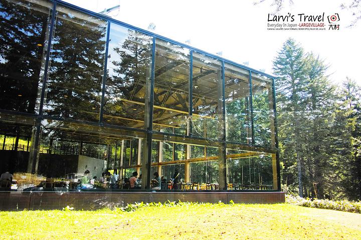 建筑采用钢结构, 非常轻盈,层高也很高,两侧都是大面的落地玻璃