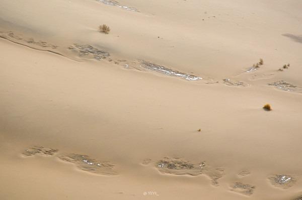 沙里结冰了,冬天的沙漠也很冷的