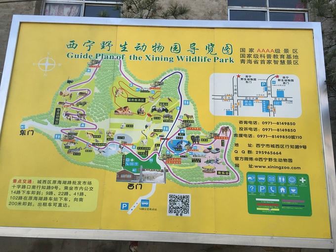 青藏高原野生动物园图片