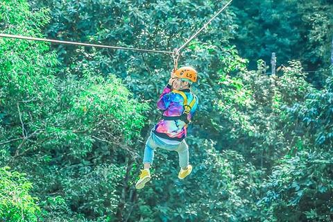 丛林飞跃flying hanuman图片