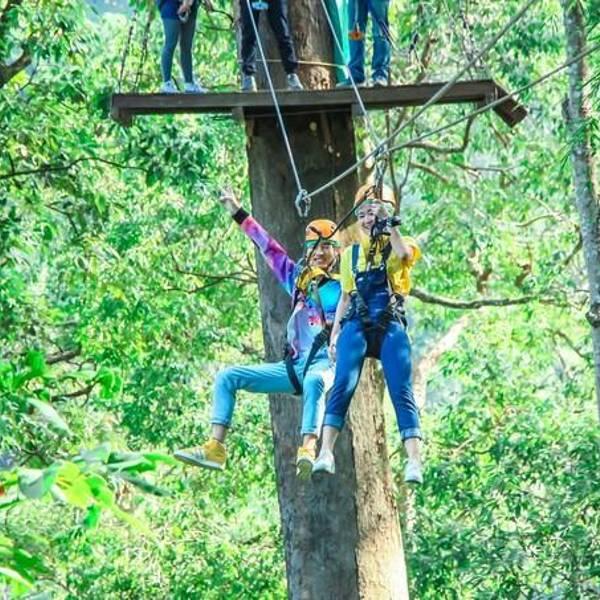 丛林飞跃图片