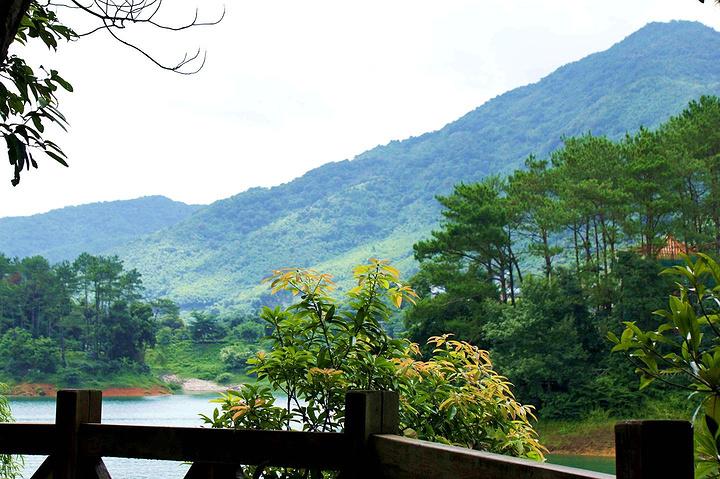 湖森林公园地处从化山区的腹地,对于我们这样的从广州大都市来的游客图片