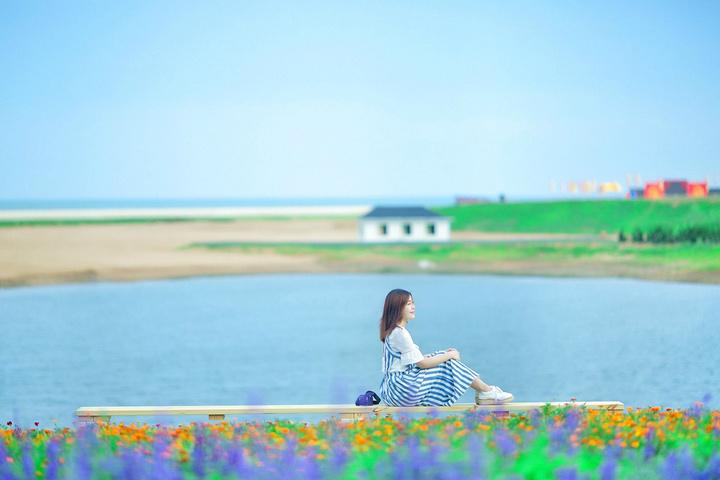 """""""祭海活动结束后,我们立刻投入了东岛这片紫._海阳连理岛""""的评论图片"""