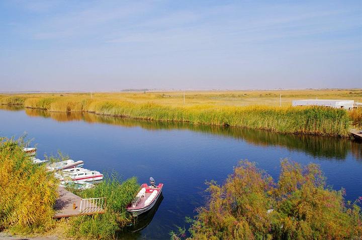 我们去离库尔勒很近的博斯腾湖游玩。 博斯腾湖是中国最大的内陆淡水湖,东西长55公里,南北宽25公里,面积1100平方公里,湖面海拔1048米。 进入博斯腾湖景区大门,先来到位于湖区西南边的莲花湖,长满了芦苇。莲花湖已经开发成为成熟的景区,可以乘坐快艇游览。