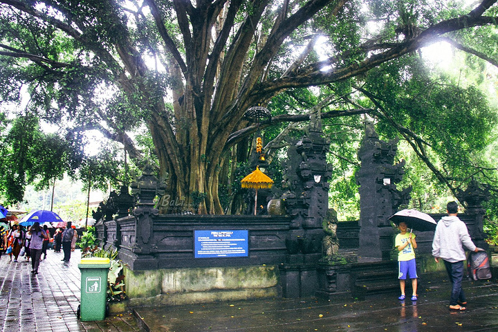 """""""圣泉寺:印度教对水的崇拜圣泉寺几乎是每..._圣泉寺""""的评论图片"""