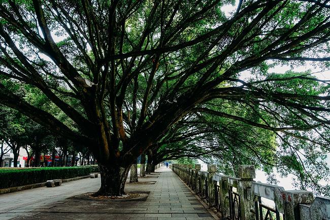 落地桂林图片