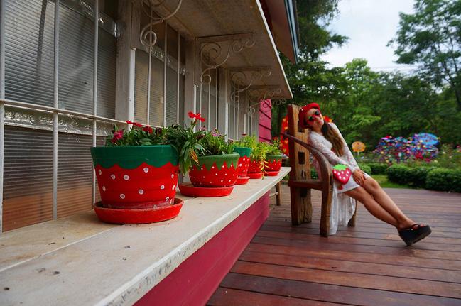 清迈清莱拜县,我的小a草莓草莓攻略_清迈v草莓攻丹霞山山顶附近住宿之旅图片