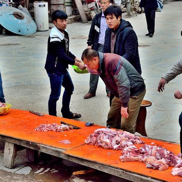 2018肇兴游记_v游记地址_门票_刑事_攻略下载11立美食点评花侗寨图片