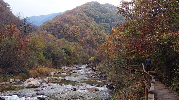 一路风景一个都没落下,走路赏景,拍照,呼吸山里新鲜空气还是很舒服哒