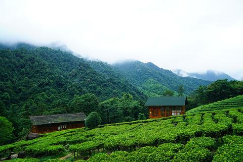 贺州旅游图片