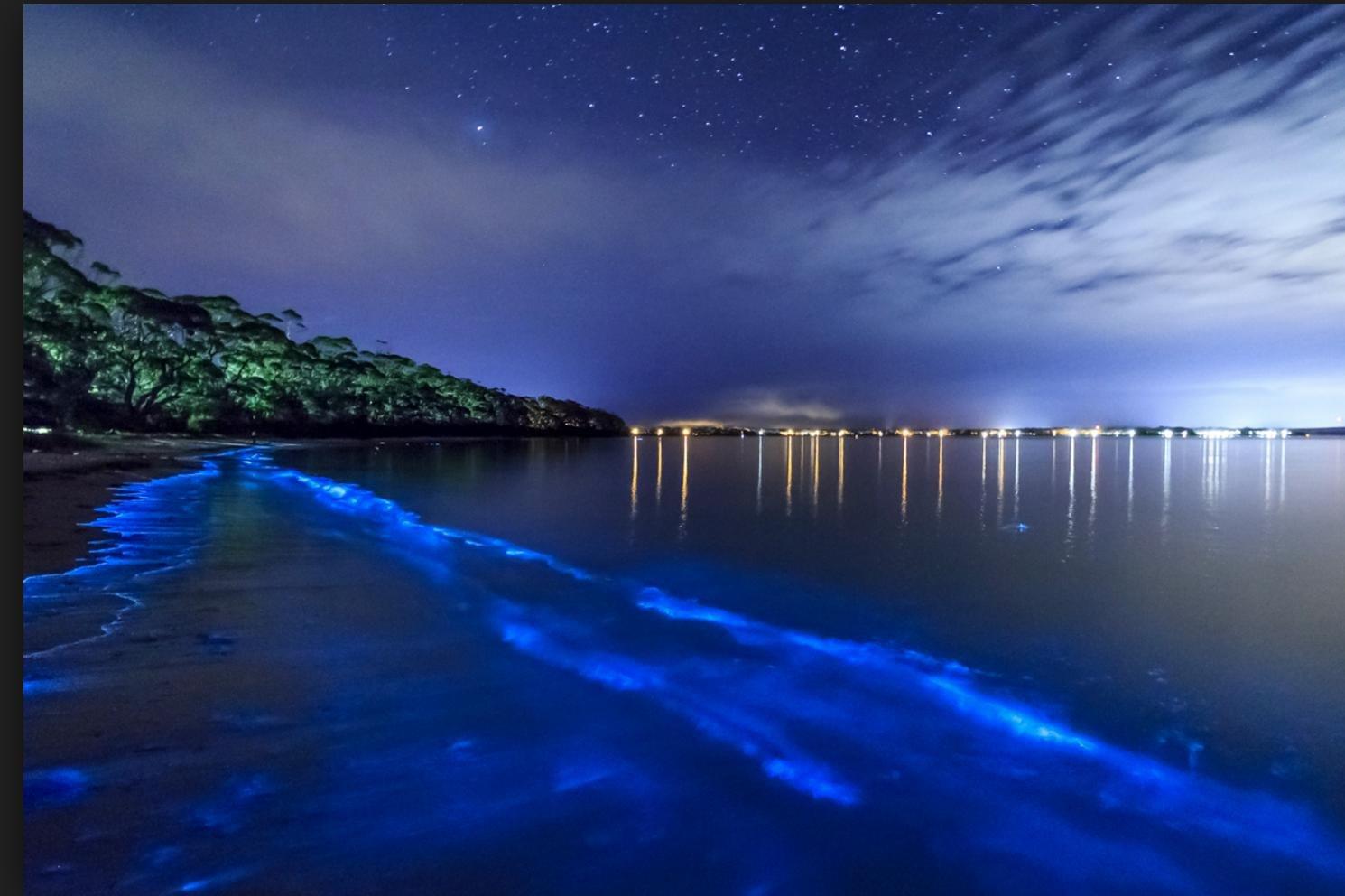 波多黎各 - 我愿在这里用尽一世的浪漫 - 加勒比海的热情岛屿六日游