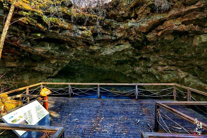 镜泊湖地下森林图片