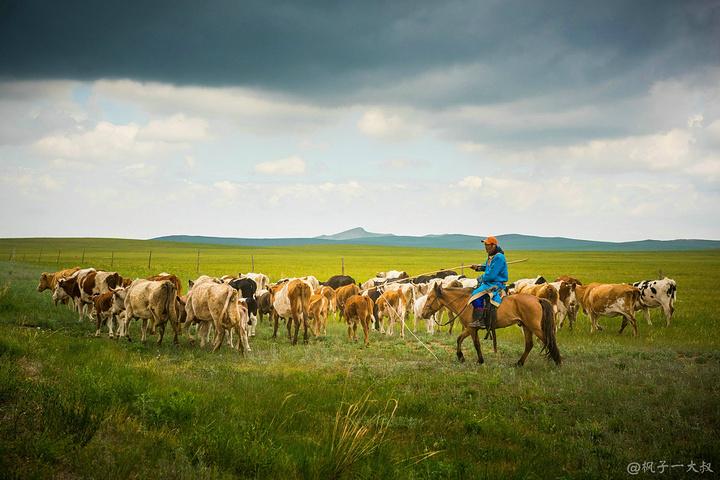 而我也终于在今天踏上电影拍摄地——乌拉盖草原