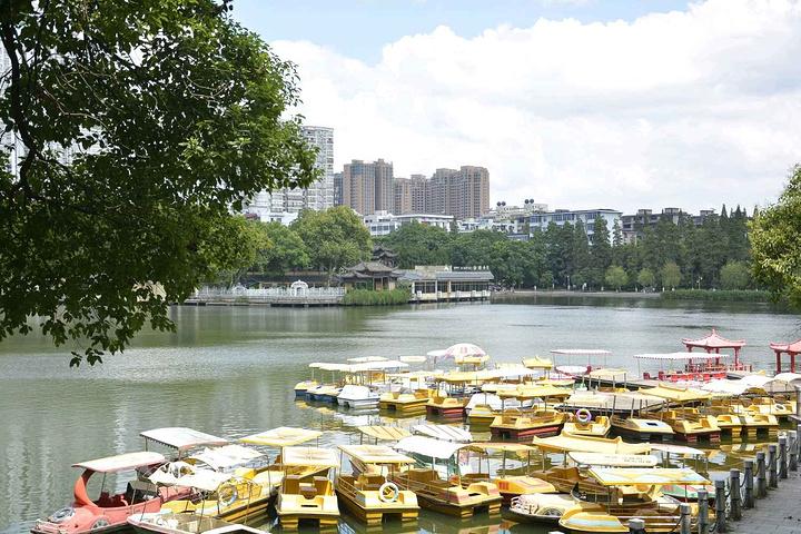 游乐园,往右是人工湖,湖这边风景比较好,值得花时间观赏,特别是夏季
