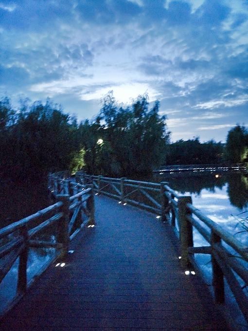 湿地公园图片