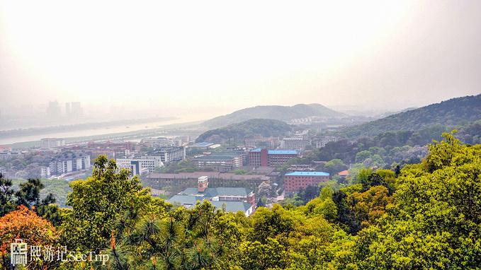 小龙虾与臭豆腐味的长沙,宁乡炭河古城打卡3000年商周