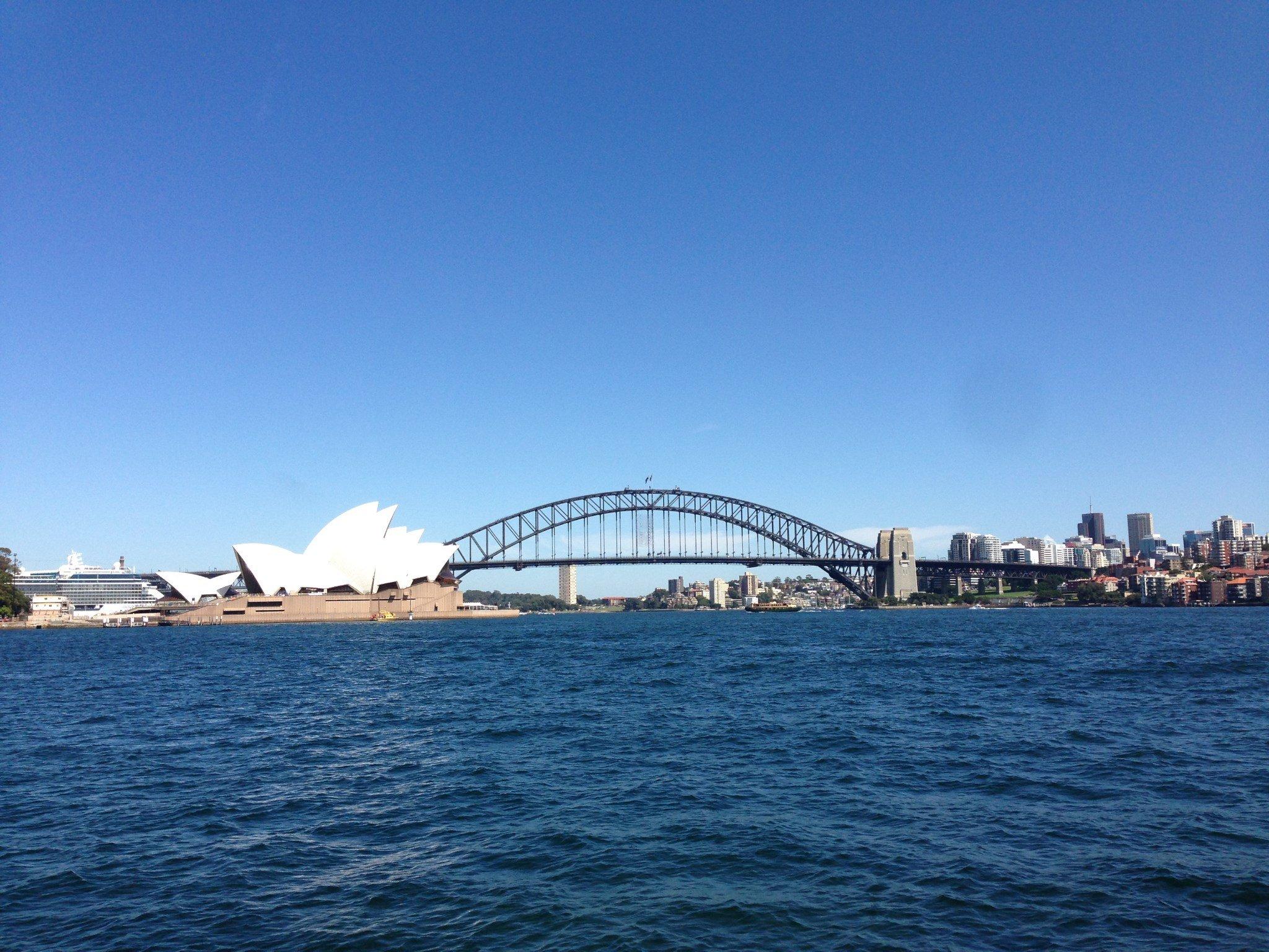 【新州•NSW】追忆似水年华(6): 在那蓝花楹盛开的地方, 繁花落尽一场梦