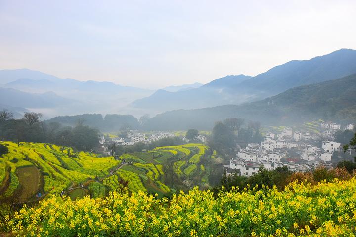 果然早上的風景確實很不一樣.享受的美景.都有霧.超級油墨畫的.