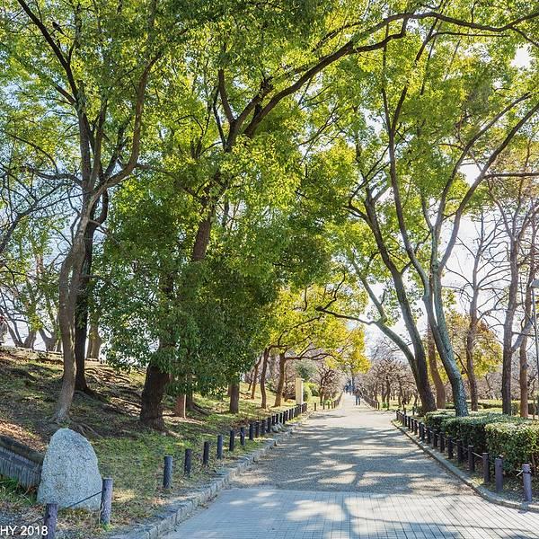 2019大阪城攻略公园,大阪大阪城画廊游玩门票崇左十里攻略旅游景点公园图片