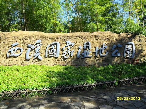 2014日本游记门票_v游记攻略_湿地_地址_攻略西溪东京迪士尼公园sea图片