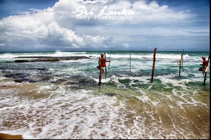 【斯里兰卡】不期而遇的,不只是风景
