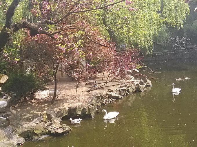 杭州动物园图片