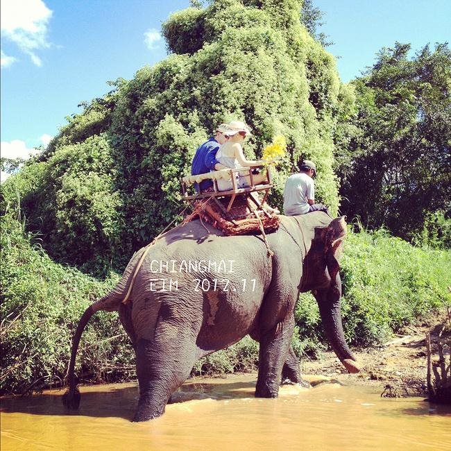 竹筏漂流&骑大象图片