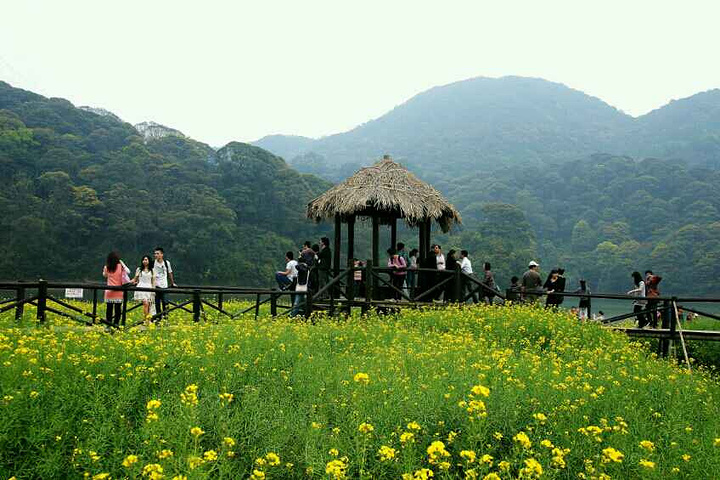 公园景色四时常新,春天云雾绕山,竹木吐翠,山花烂漫,百鸟争鸣;9万亩
