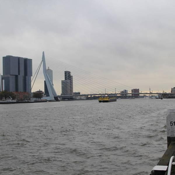 2018鹿特丹港_v门票门票_攻略_攻略_地址点评游记欧洲自助游图片