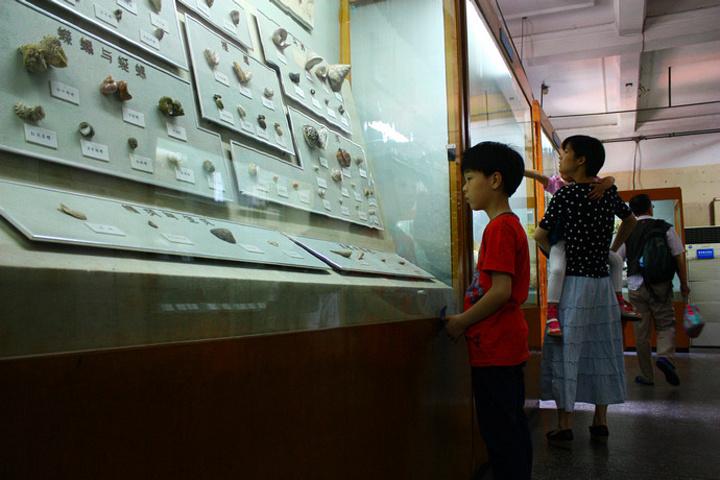 """上海自然博物馆(静安新馆)"""""""