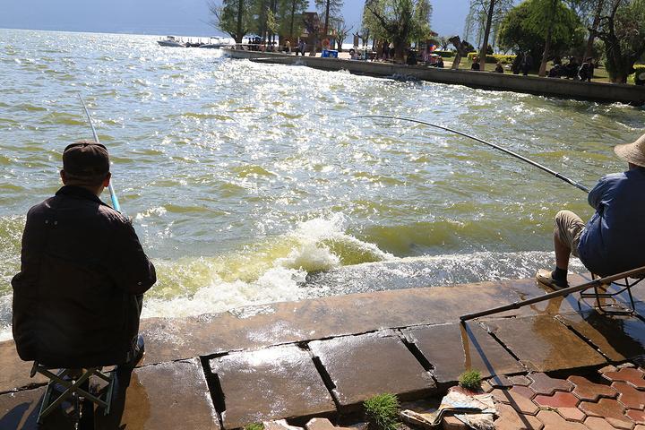 2015公园美食,转到海埂龙王。第一眼看见缆车古兜温泉下处图片