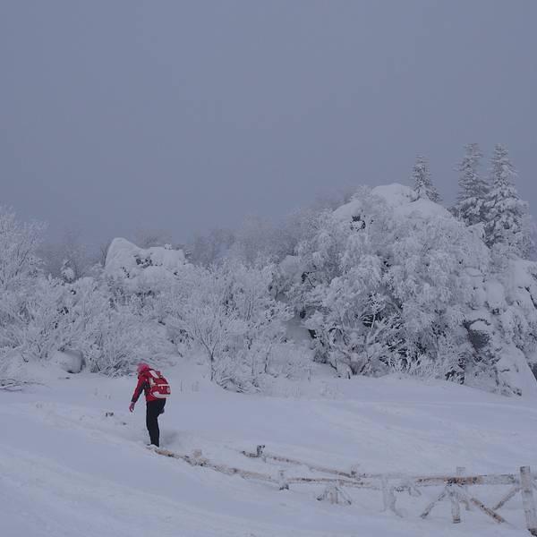 到达雪乡后,先去预定的客栈报道,把背包放下,然后去行李点拿雪谷的行李。 客栈老板告诉我们去哪提行李的时候,我内心是崩溃的! 因为拿行李的地点很远,要穿过整条雪韵大街,而且客栈离雪韵大街也很远~~~ 晚上雪开始下大,温度也开始下降,手机天气已经显示零下14度了; 我和聪两人借着老板的板车去拖行李,小妞在客栈等我们。 我和聪轮流坐在板车上,拉着对方飞一会儿,这种感觉还是挺舒服的, 路上的行人目光都聚集在我们这:还能 这样玩~~~ 雪乡很多狗撬和马撬,人撬有木有?!你们肯定没见过!哈哈! 在山顶买的雪乡的门票!
