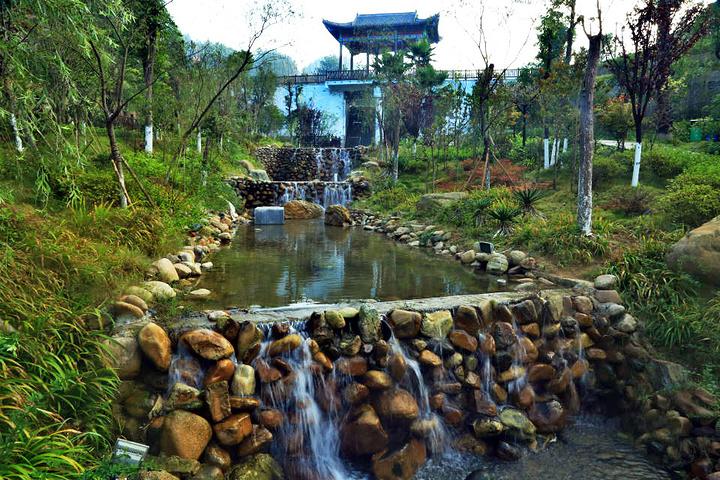 三台山是森林公园 桂东三台山森林公园 的评论图片