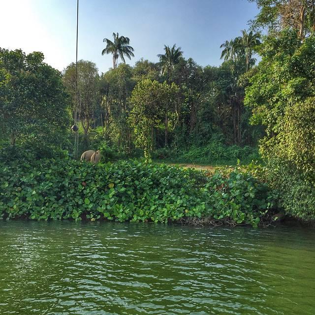 河川动物园旅游攻略