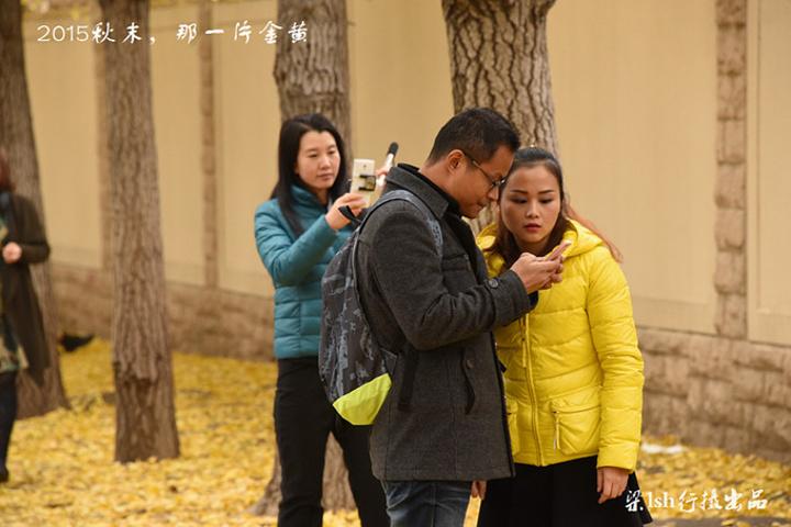 深秋时节,这里成为了北京城区
