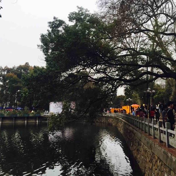 武汉大学旅游攻略