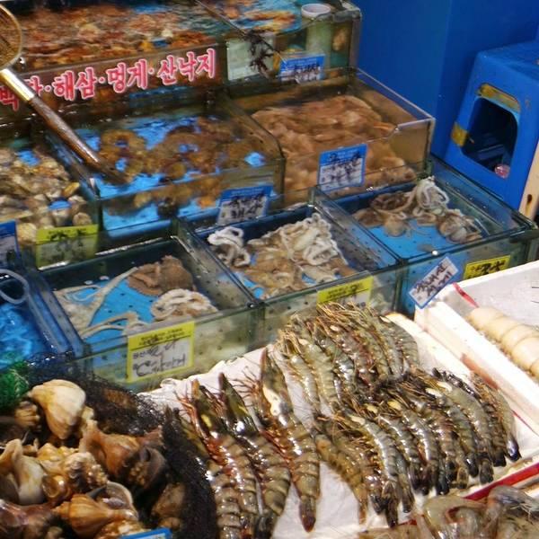广州水产市场_在广州黄沙海鲜水产市场买海鲜可以在什么地方加工,我想知道 ...