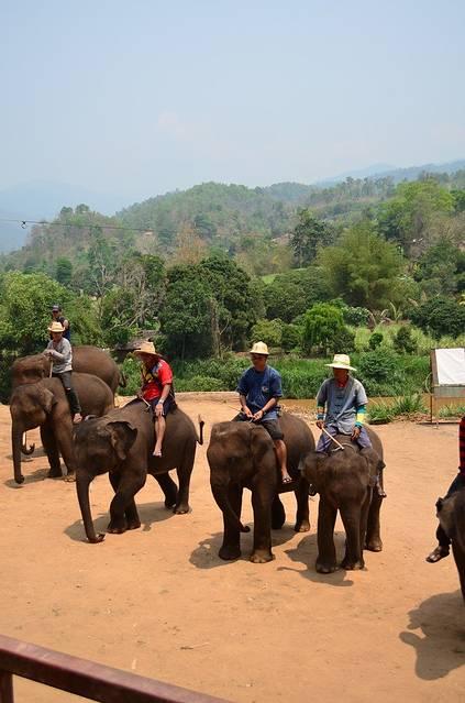跟我走,去泰国