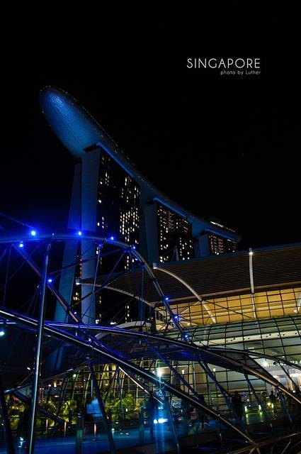 """擎天大树的部分""""树冠""""安装了光伏电池,可吸收太阳能,供夜间照明,其他"""""""